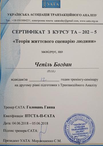 Сертификат теория жизненного сценария человека - Чепиль Богдан