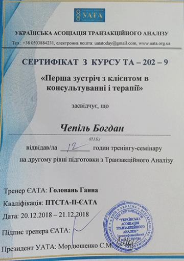 Диплом Консультация и терапия