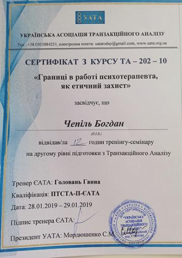 Диплом Чепиль Богдана - Границы в работе психотерапевта